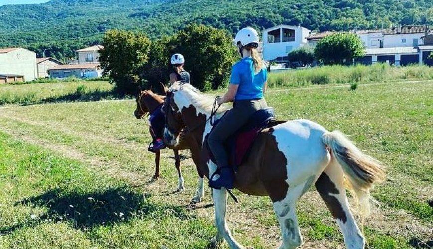 bicicarril pack bicicleta i cavalls a Girona